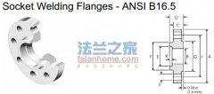 ANSI B16.5 300lb socket welding flange